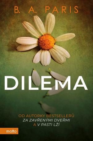 Dilema (český jazyk)